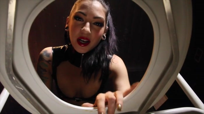 Cybill Troy - Toilet Slave For Life